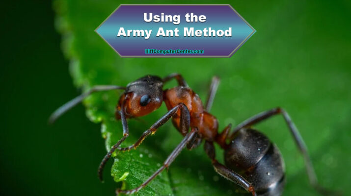 Army Ant Method